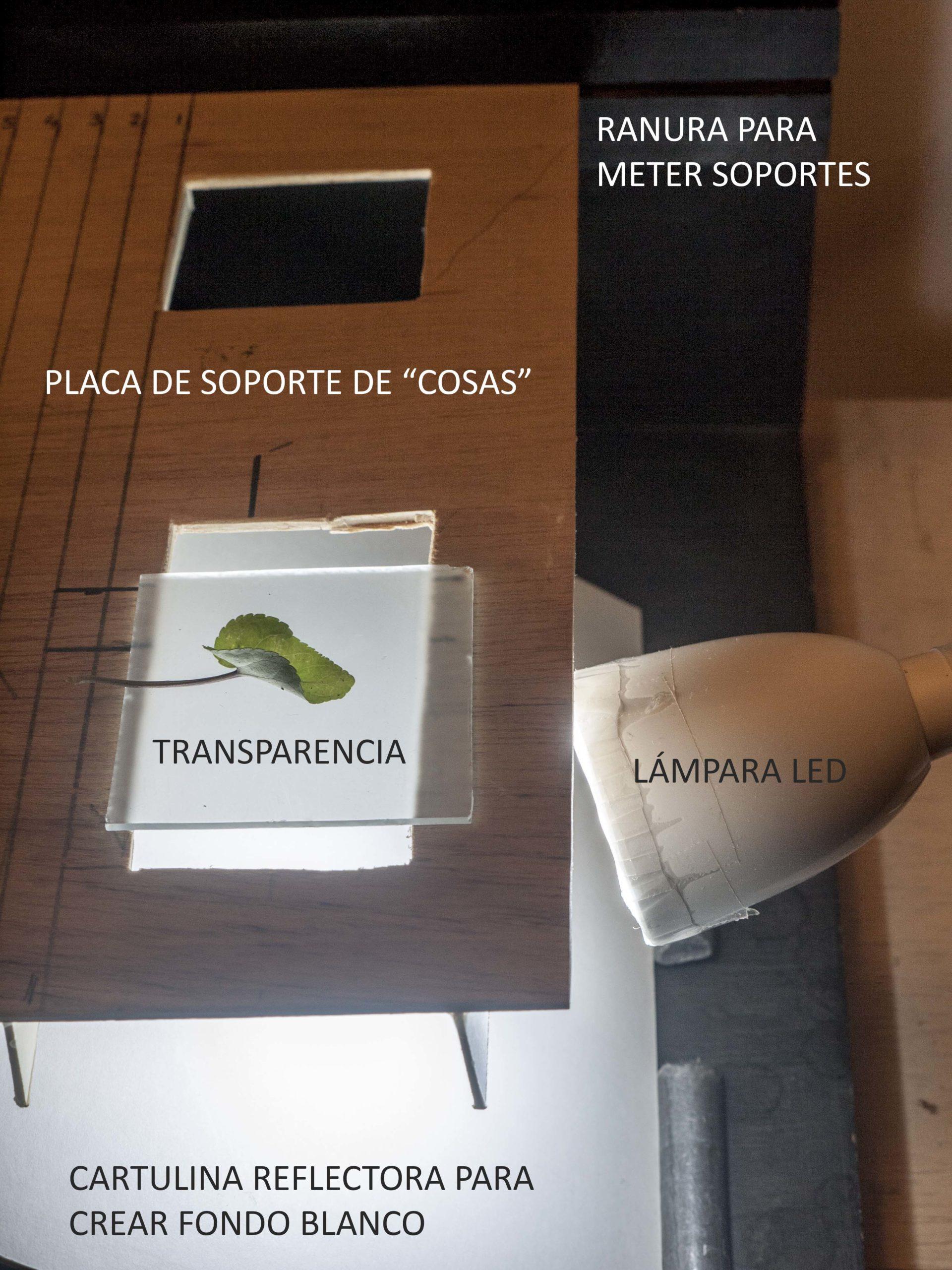 Pep Bonet Capellá-Macro fotografía-Técnica fotofráfica (2)