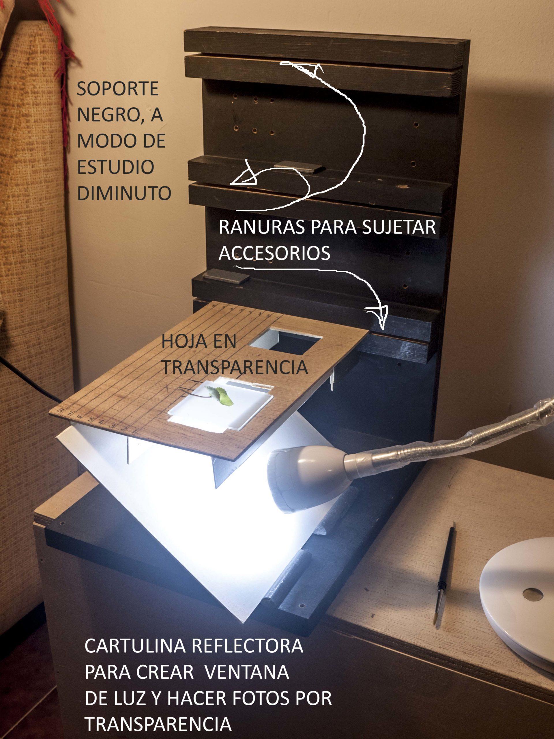 Pep Bonet Capellá-Macro fotografía-Técnica fotofráfica (3)